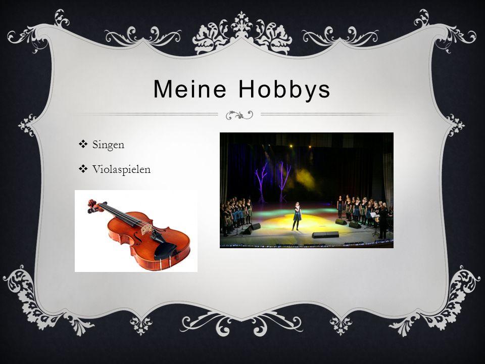 Meine Hobbys Singen Violaspielen