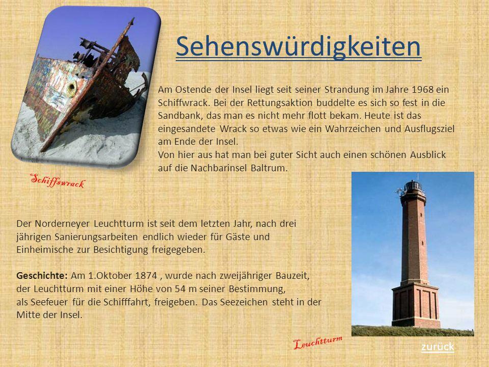Sehenswürdigkeiten Schiffswrack Leuchtturm zurück