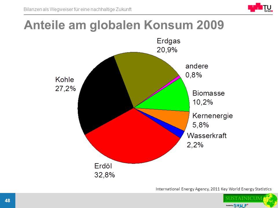 Anteile am globalen Konsum 2009