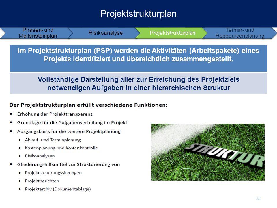 Projektstrukturplan Phasen- und Meilensteinplan. Risikoanalyse. Projektstrukturplan. Termin- und Ressourcenplanung.