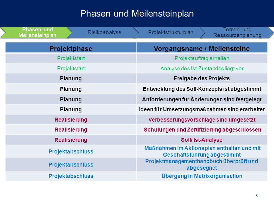 Phasen und Meilensteinplan