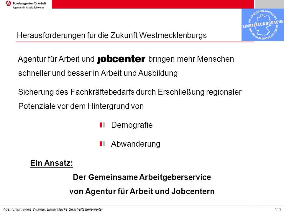 Herausforderungen für die Zukunft Westmecklenburgs