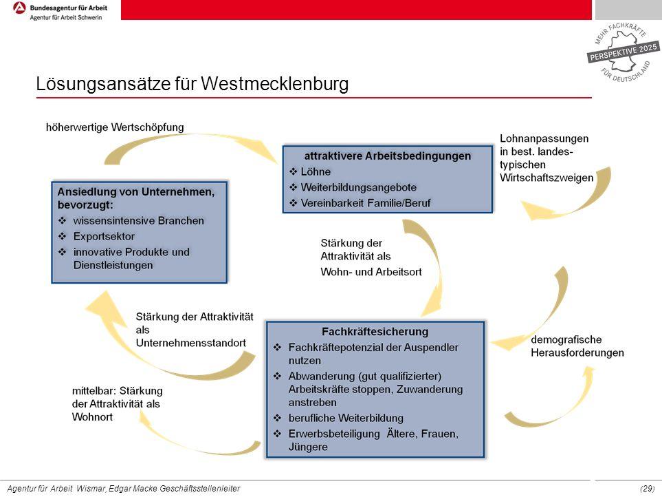 Lösungsansätze für Westmecklenburg