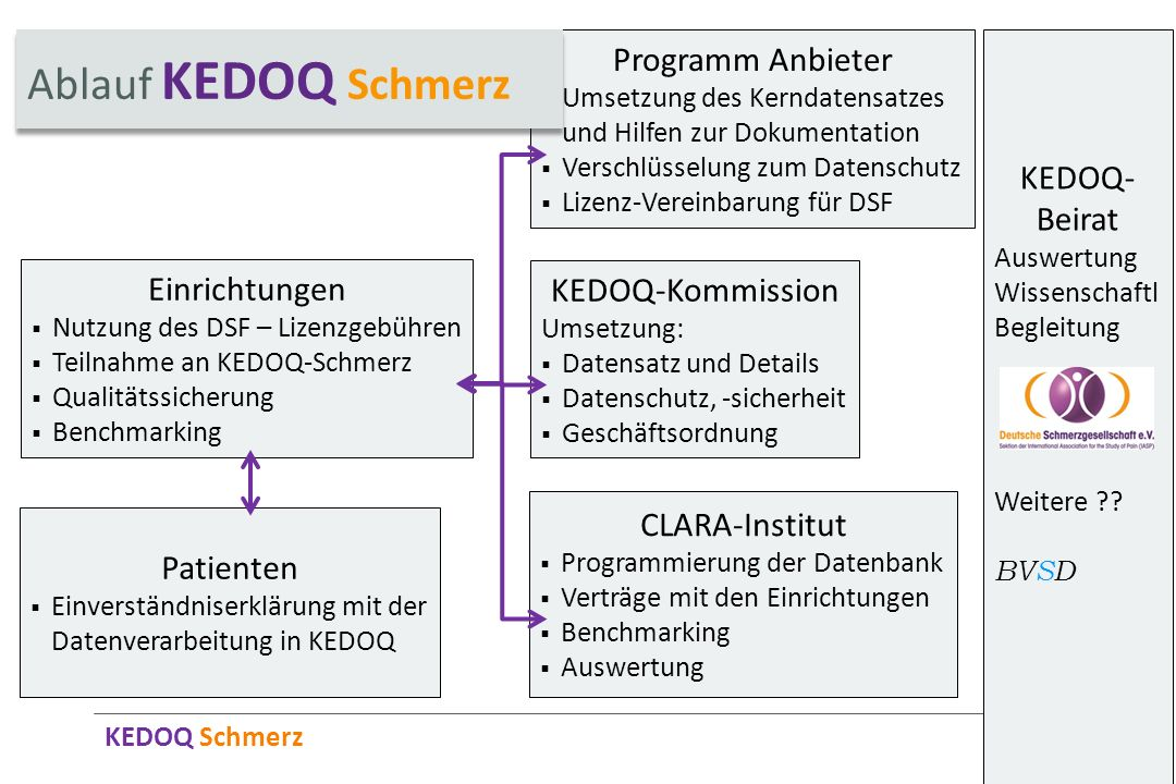 Ablauf KEDOQ Schmerz Programm Anbieter KEDOQ-Beirat Einrichtungen