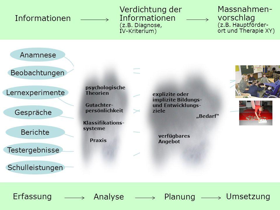 Verdichtung der Informationen (z.B. Diagnose, IV-Kriterium)
