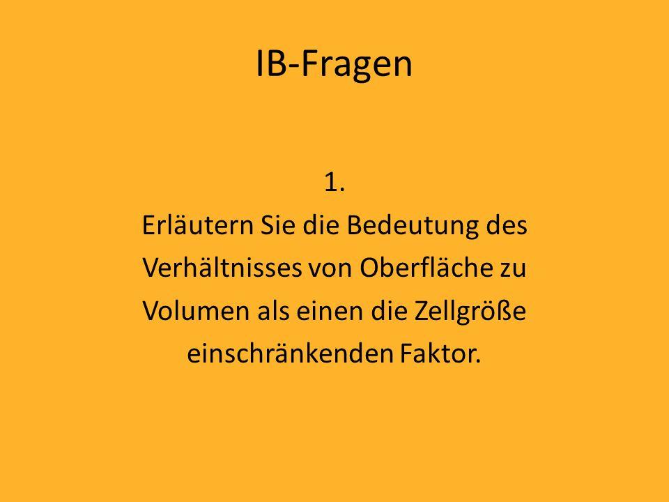 IB-Fragen 1.