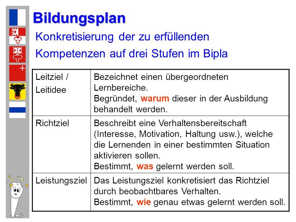 Bildungsplan Konkretisierung der zu erfüllenden Kompetenzen auf drei Stufen im Bipla. Leitziel / Leitidee.