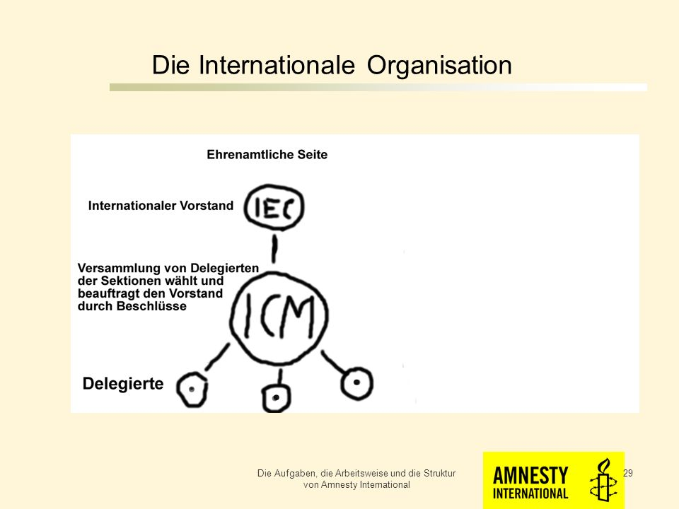 Die Internationale Organisation