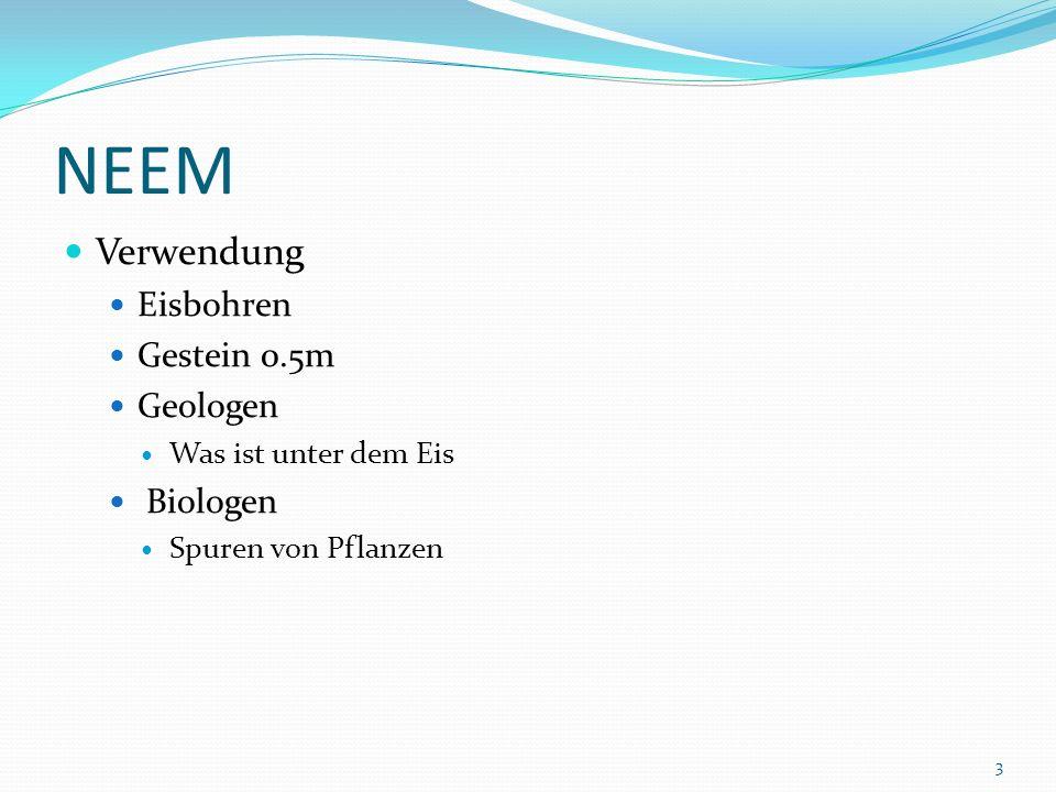 NEEM Verwendung Eisbohren Gestein 0.5m Geologen Biologen