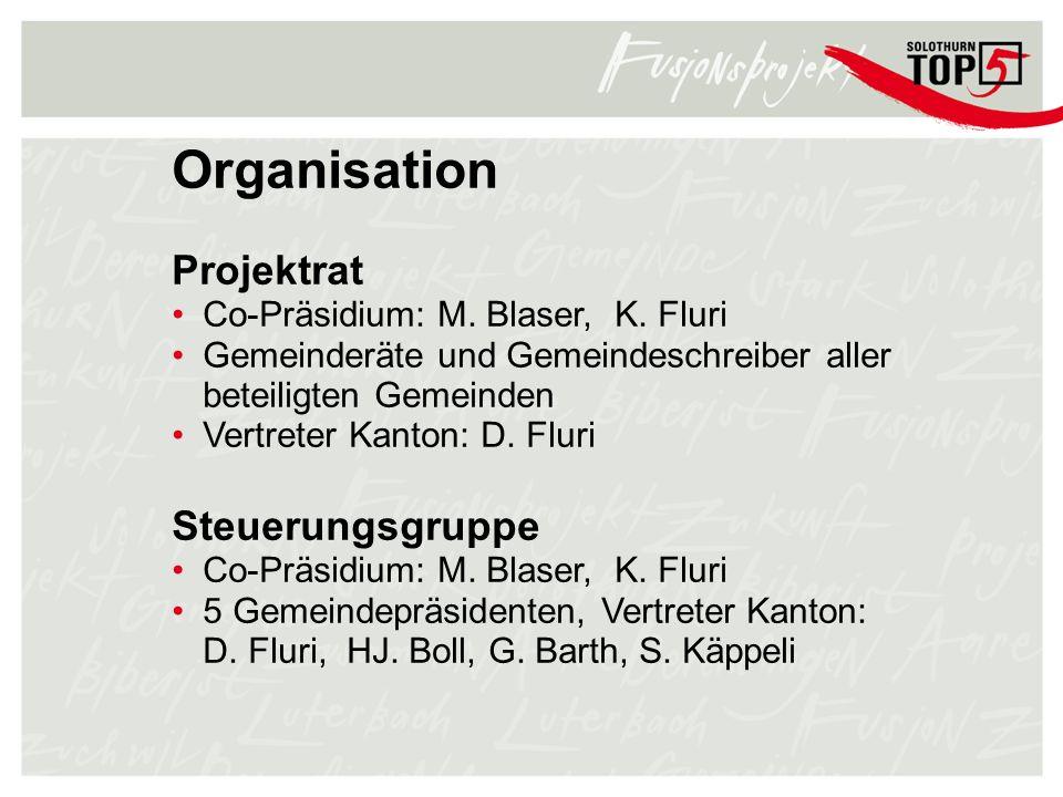 Organisation Projektrat Steuerungsgruppe