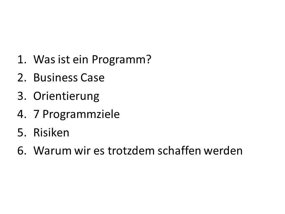 Was ist ein Programm. Business Case. Orientierung.