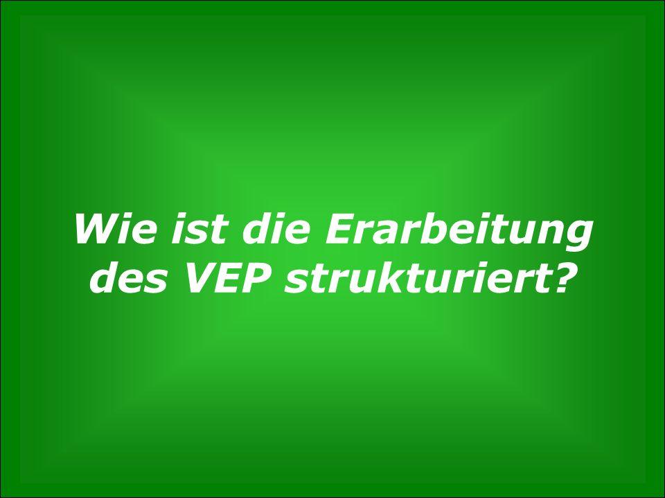 Wie ist die Erarbeitung des VEP strukturiert