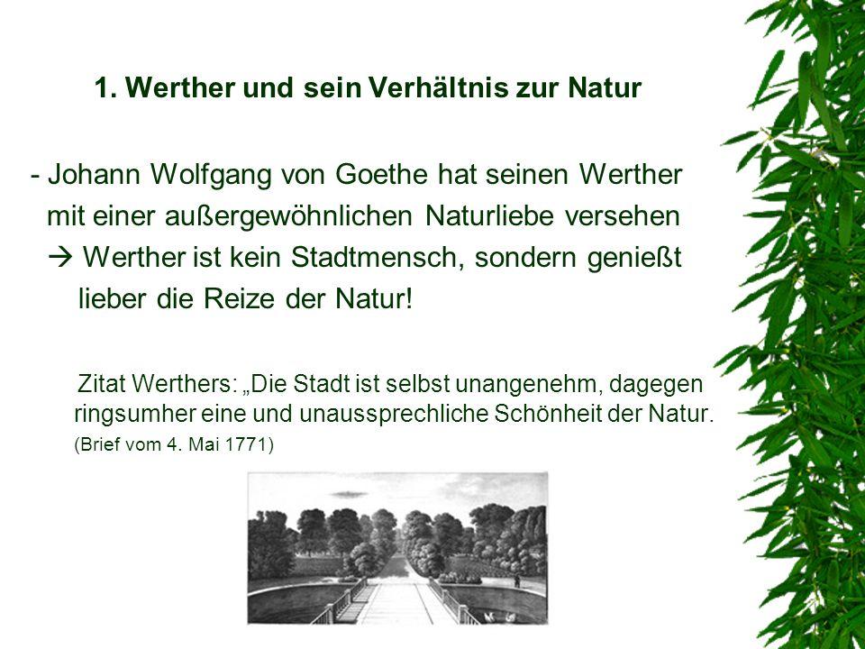 1. Werther und sein Verhältnis zur Natur