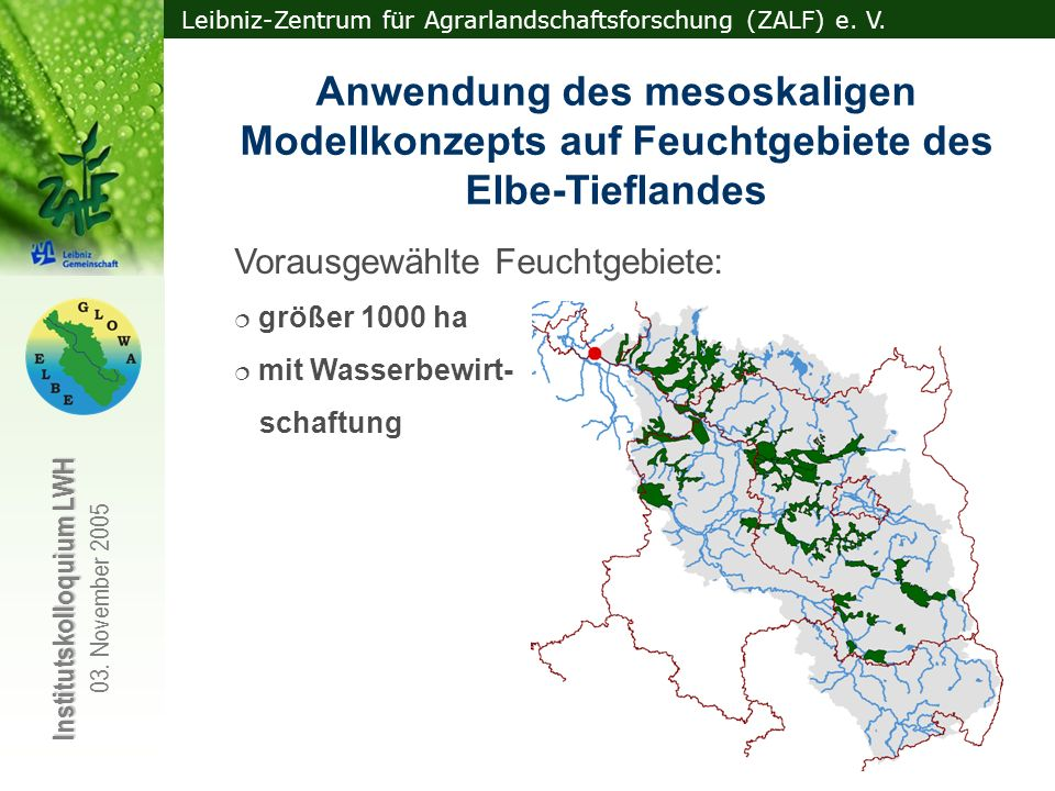 Anwendung des mesoskaligen Modellkonzepts auf Feuchtgebiete des Elbe-Tieflandes