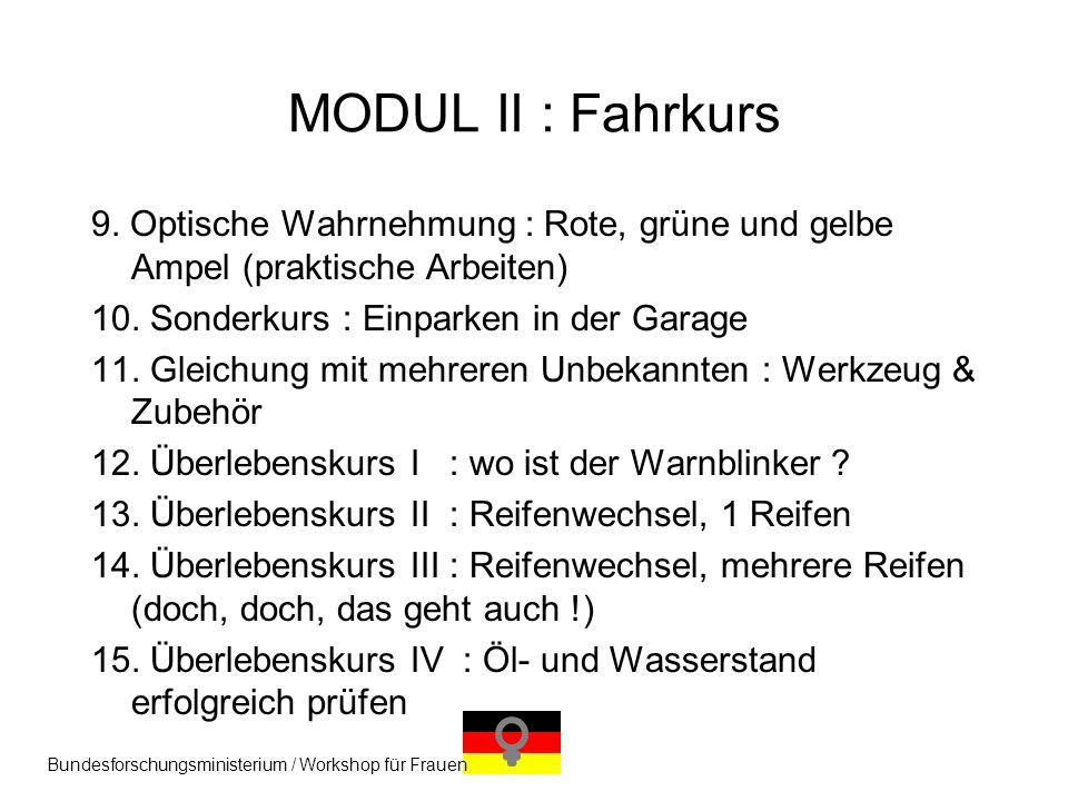 MODUL II : Fahrkurs 9. Optische Wahrnehmung : Rote, grüne und gelbe Ampel (praktische Arbeiten) 10. Sonderkurs : Einparken in der Garage.