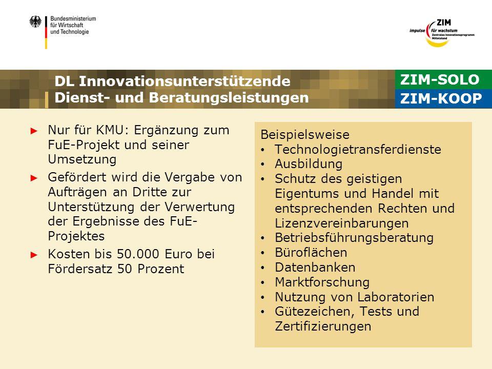 DL Innovationsunterstützende Dienst- und Beratungsleistungen