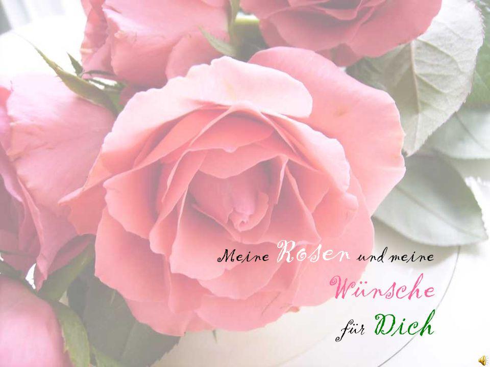 Meine Rosen und meine Wünsche für Dich