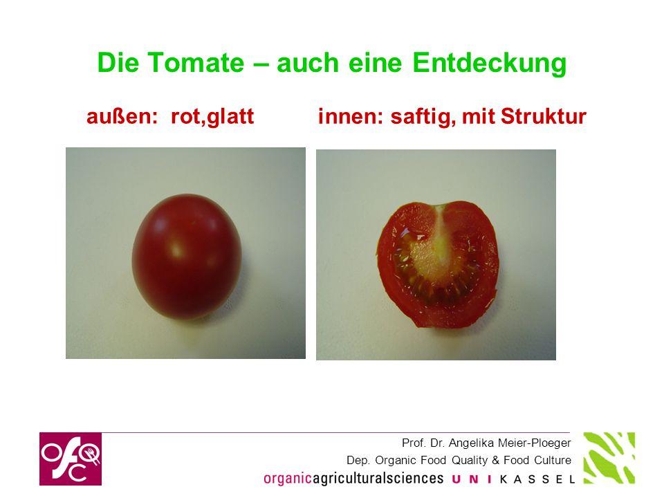 Die Tomate – auch eine Entdeckung