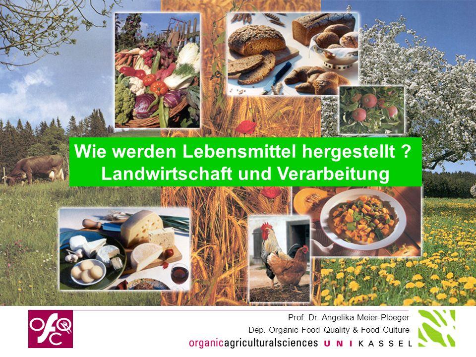 Landwirtschaft und Verarbeitung