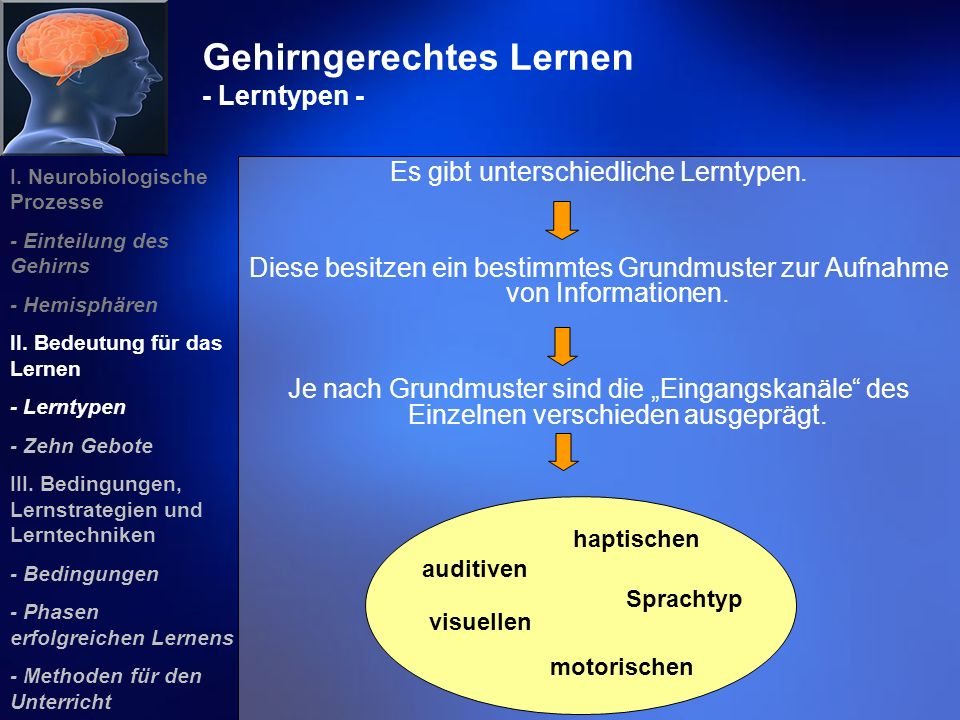 Gehirngerechtes Lernen - Lerntypen -