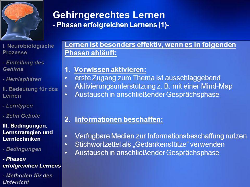 Gehirngerechtes Lernen - Phasen erfolgreichen Lernens (1)-