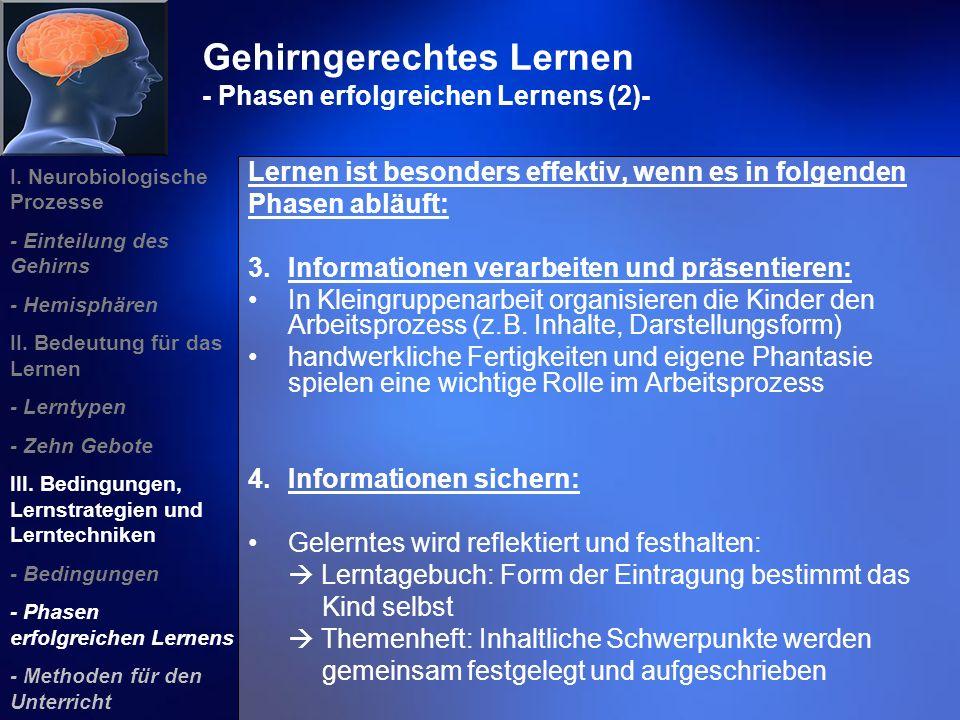 Gehirngerechtes Lernen - Phasen erfolgreichen Lernens (2)-