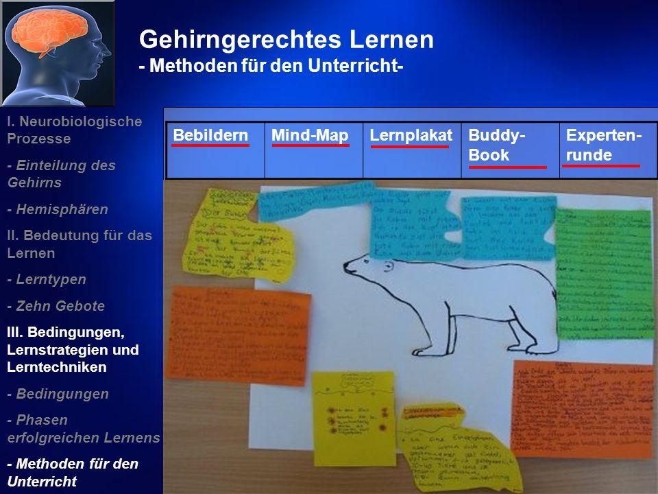 Gehirngerechtes Lernen - Methoden für den Unterricht-
