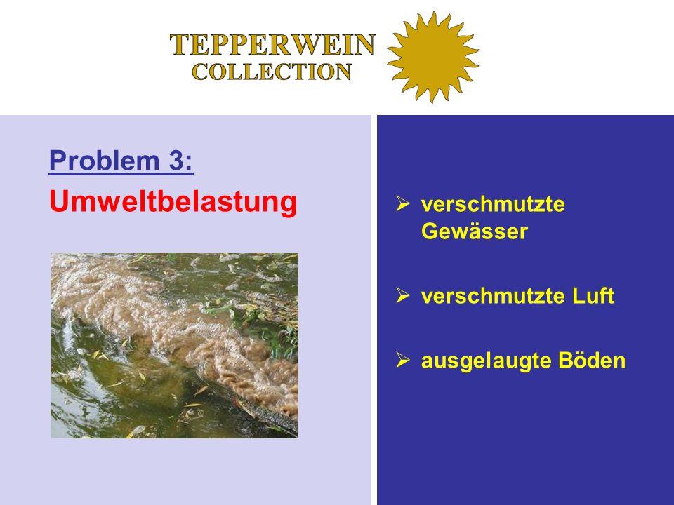 Umweltbelastung Problem 3: verschmutzte Gewässer verschmutzte Luft