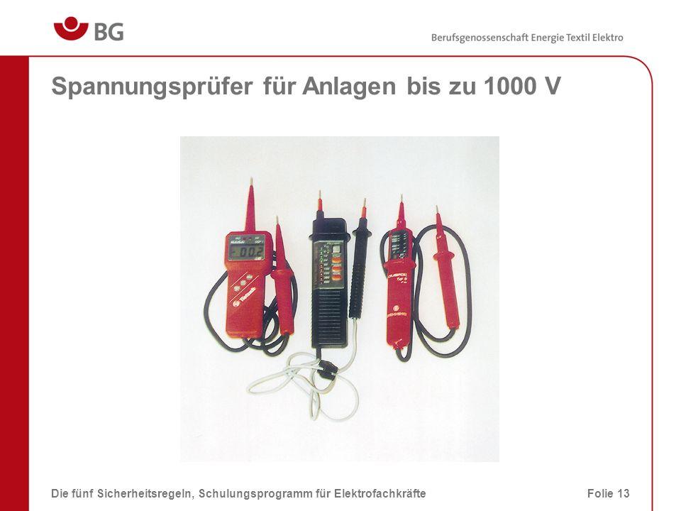 Spannungsprüfer für Anlagen bis zu 1000 V