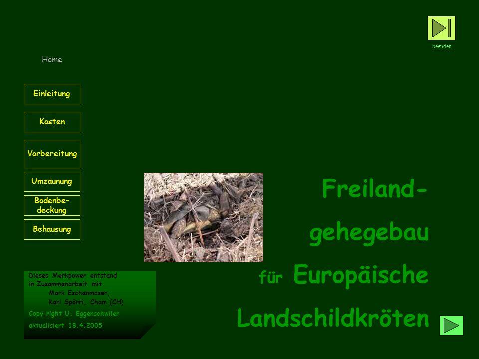 Freiland- gehegebau Landschildkröten für Europäische Home Einleitung