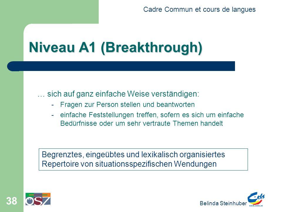 Niveau A1 (Breakthrough)