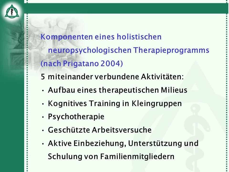 Komponenten eines holistischen neuropsychologischen Therapieprogramms