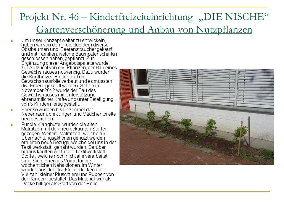 """Projekt Nr. 46 – Kinderfreizeiteinrichtung """"DIE NISCHE Gartenverschönerung und Anbau von Nutzpflanzen"""