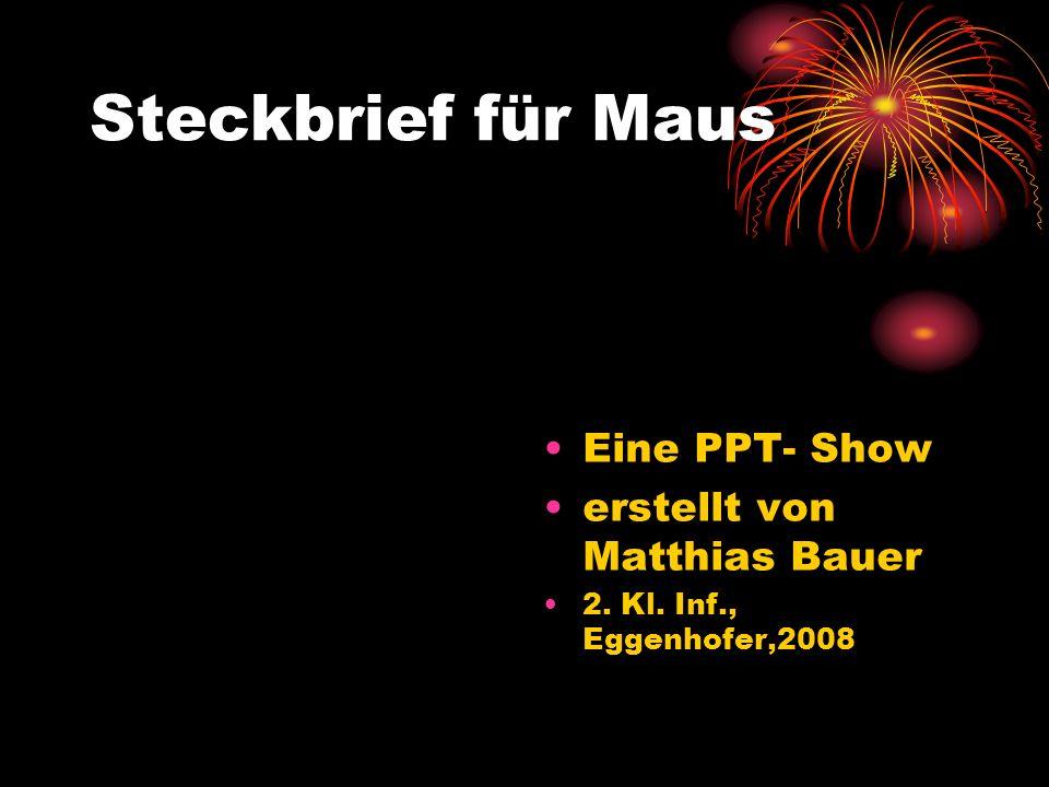 Steckbrief für Maus Eine PPT- Show erstellt von Matthias Bauer