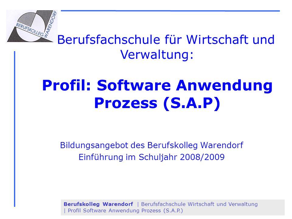 Profil: Software Anwendung Prozess (S.A.P)