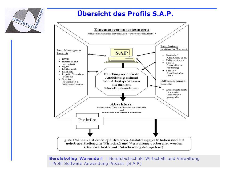 Übersicht des Profils S.A.P.