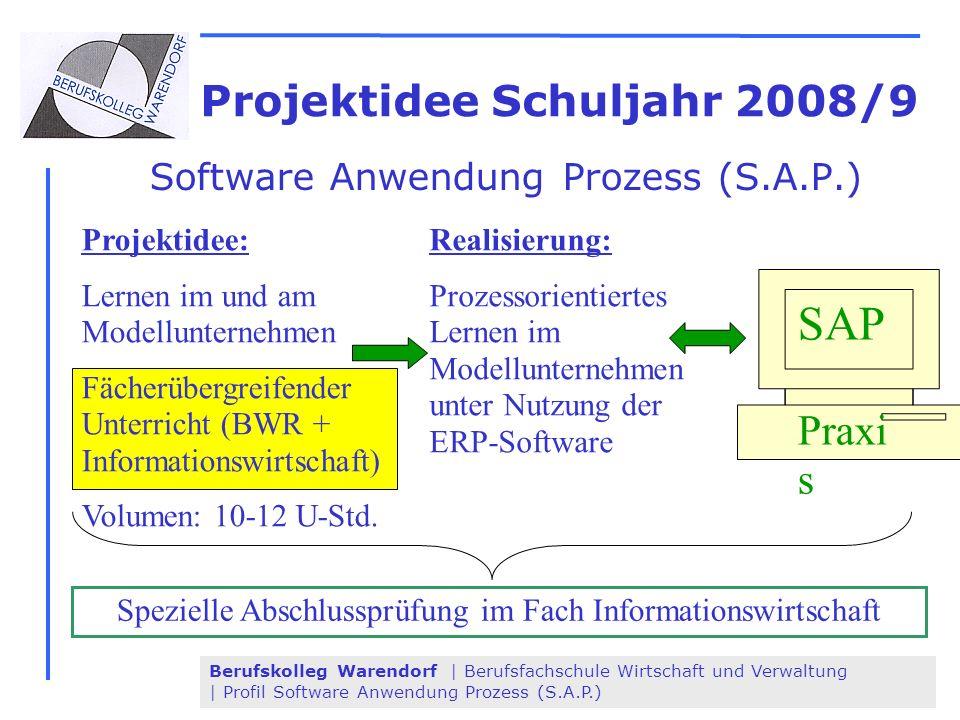 Projektidee Schuljahr 2008/9