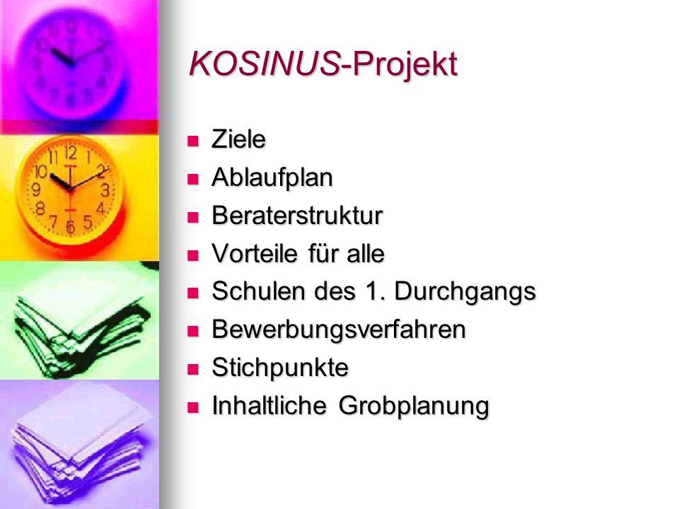 KOSINUS-Projekt Ziele Ablaufplan Beraterstruktur Vorteile für alle