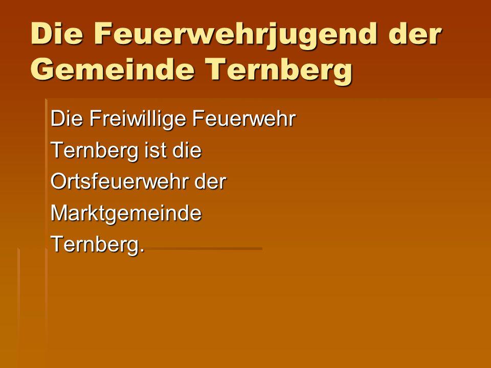 Die Feuerwehrjugend der Gemeinde Ternberg