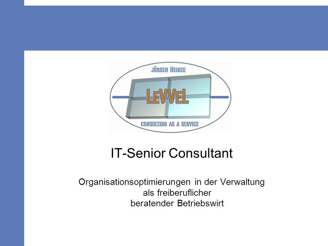 IT-Senior Consultant Organisationsoptimierungen in der Verwaltung als freiberuflicher beratender Betriebswirt.