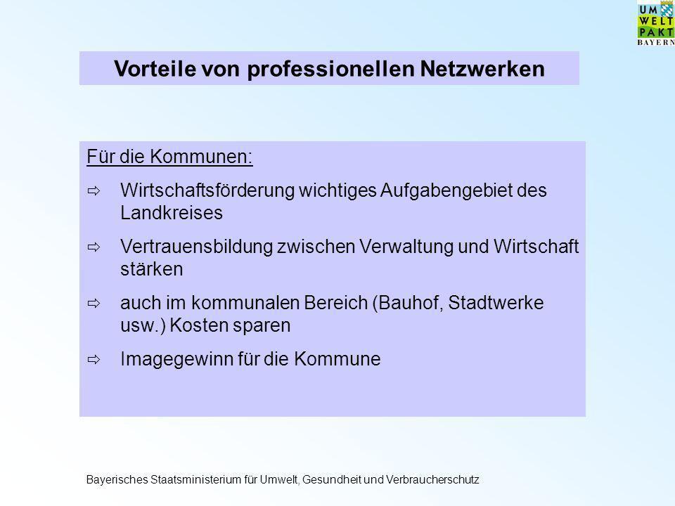 Vorteile von professionellen Netzwerken