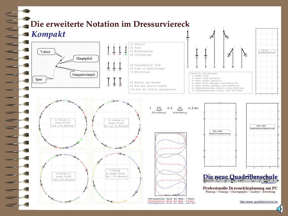 Die Notation - Kompakt Mehrere Materialien unterstützen die Notation und machen Sie auch ausserhalb des Softwaresystems nutzbar.
