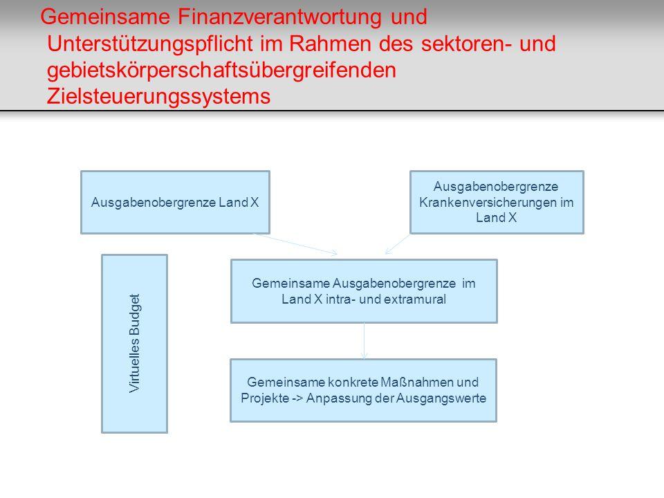 Gemeinsame Finanzverantwortung und Unterstützungspflicht im Rahmen des sektoren- und gebietskörperschaftsübergreifenden Zielsteuerungssystems