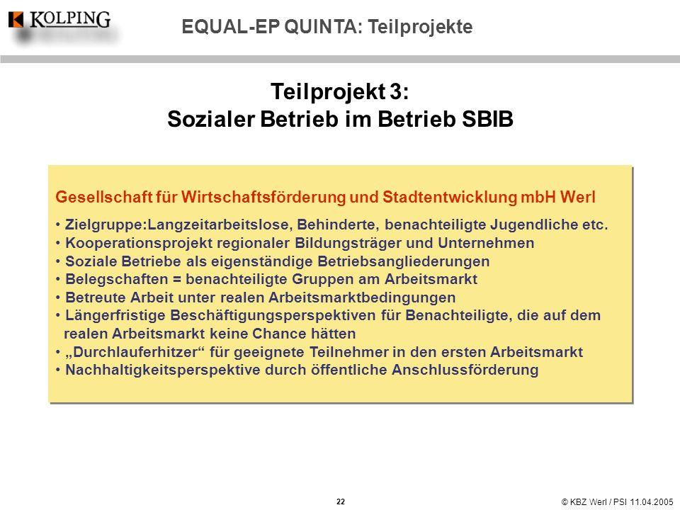 Teilprojekt 3: Sozialer Betrieb im Betrieb SBIB