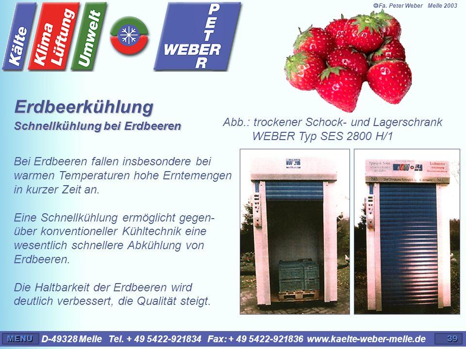 Erdbeerkühlung Schnellkühlung bei Erdbeeren
