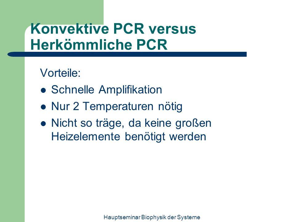 Konvektive PCR versus Herkömmliche PCR