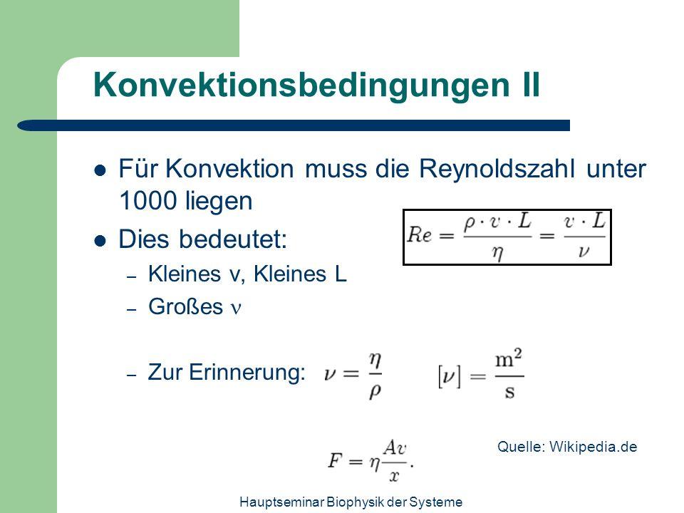 Konvektionsbedingungen II
