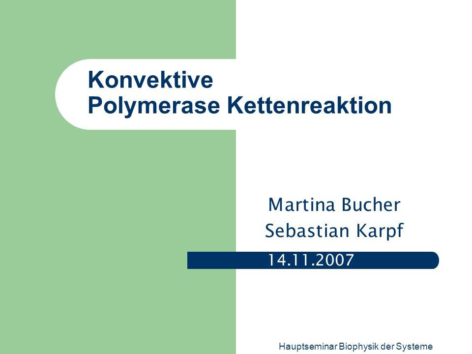 Konvektive Polymerase Kettenreaktion