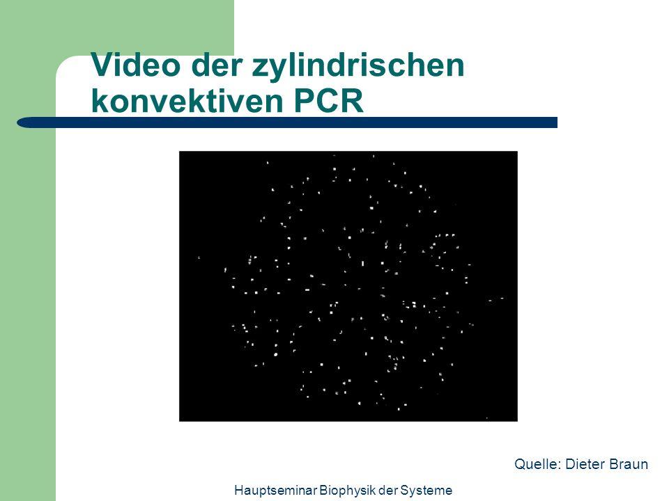 Video der zylindrischen konvektiven PCR