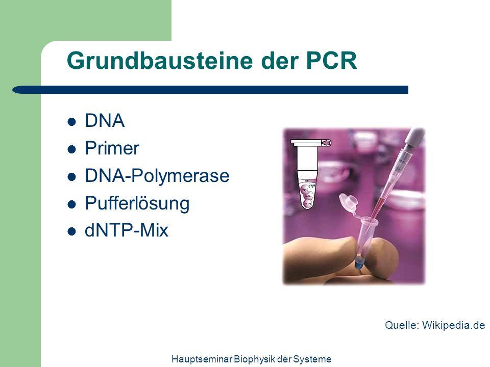 Grundbausteine der PCR